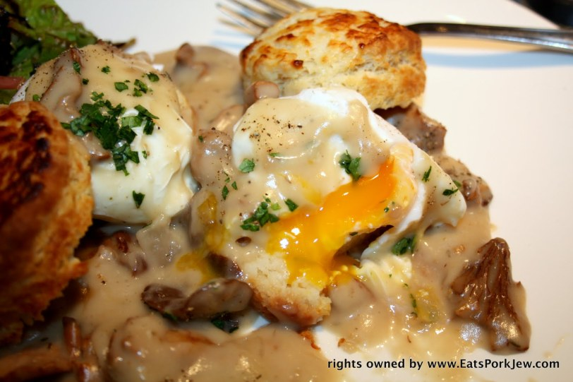 Biscuits and Gravy with hedge hog and candy cap mushroom gravy #2