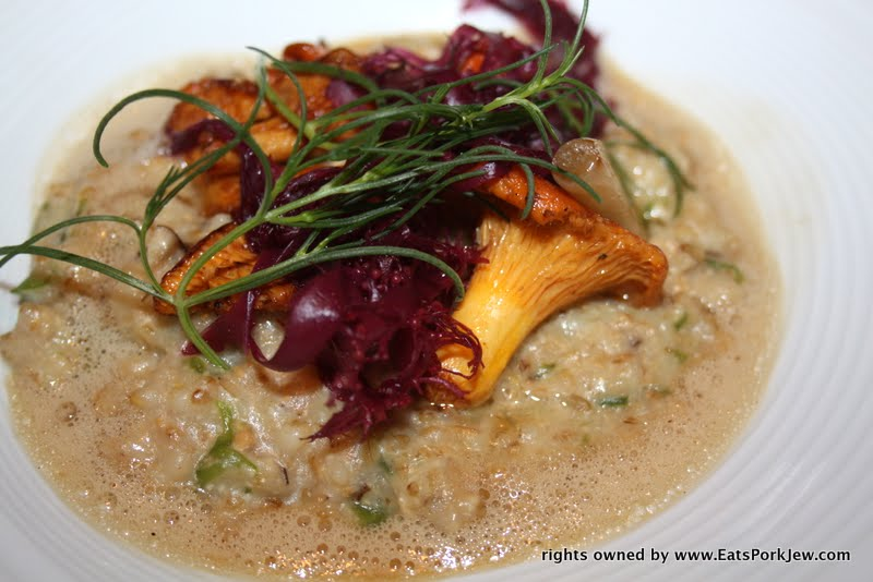 food photos- Volt in Frederick Maryland