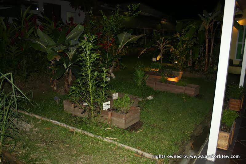 food-photos-website-vegetable-garden-Maito-restaurant