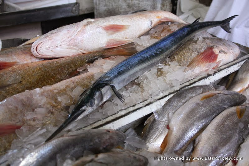 food-travel-blog-fresh-fish-barracuda